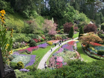 On our walk in Butchart Gardens